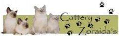 Cattery Zoraida's